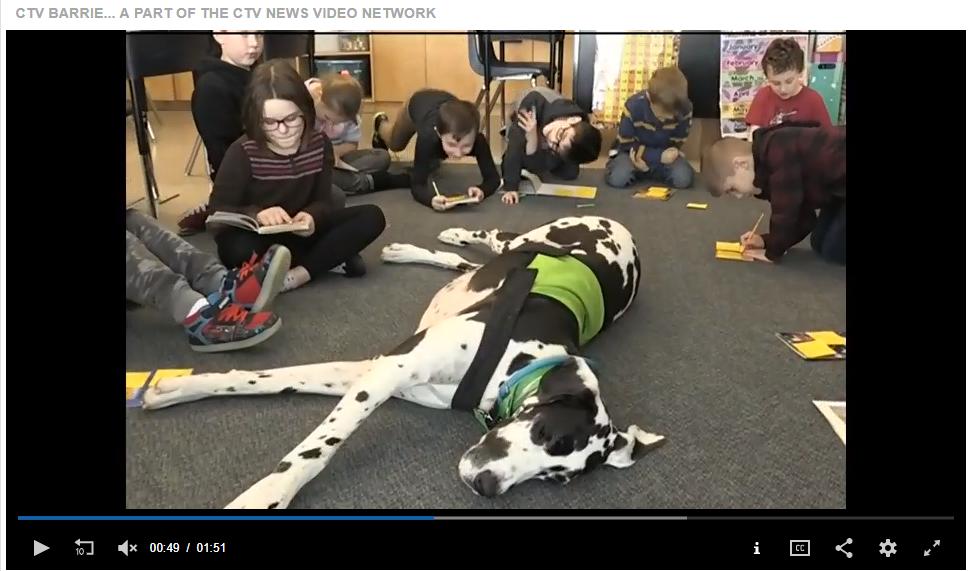 Canine Ambassadors In School – CTV News Midland