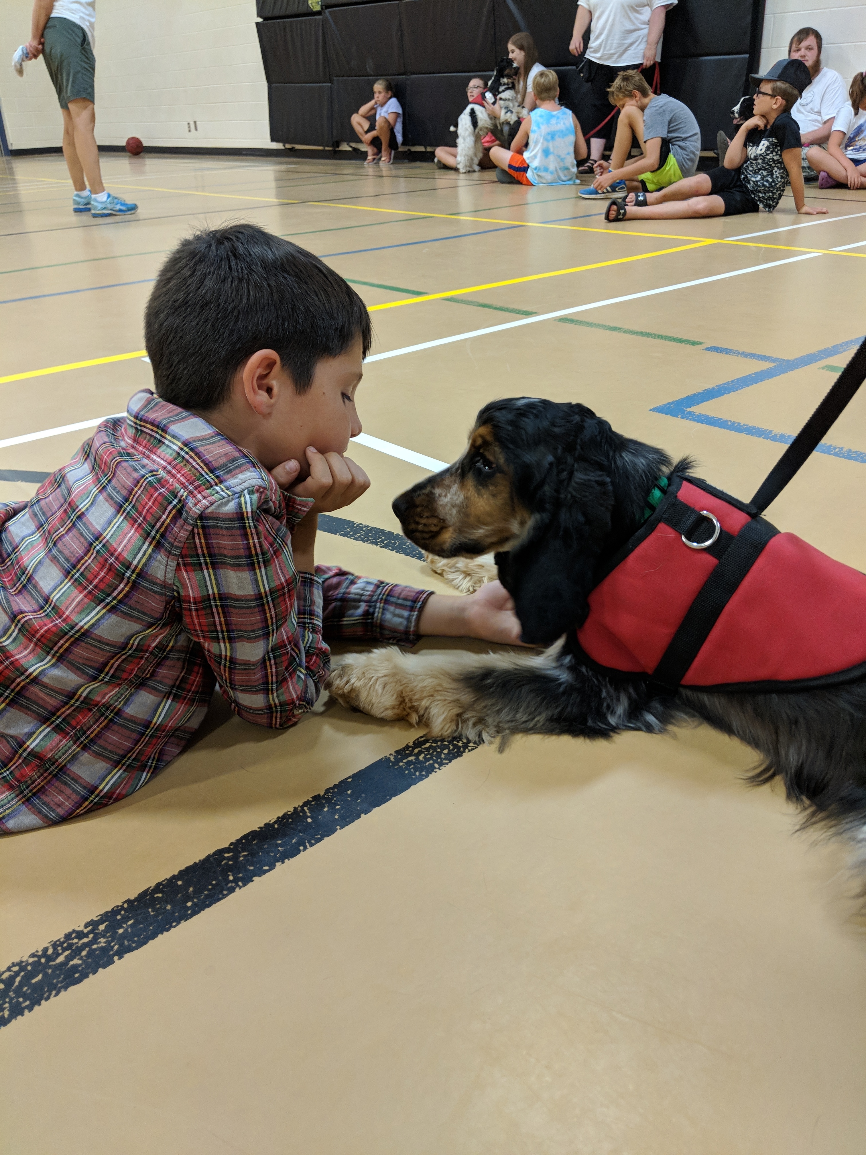 Sweet Charity Dogs Go To Summer Camp