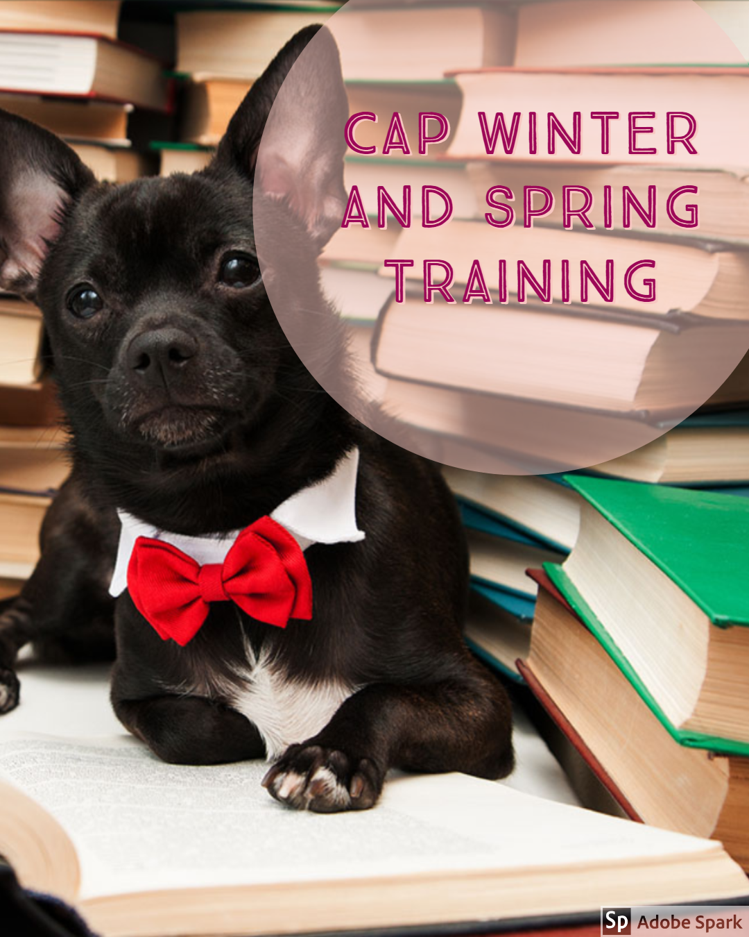 CAP Winter And Spring 2020 Training